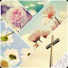 Meghan Payne Pinterest Account