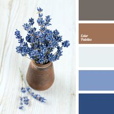 brown, brown and dark blue, color of clay, gray, gray-brown, lavender, light blue, mouse gray, shades of dark blue.