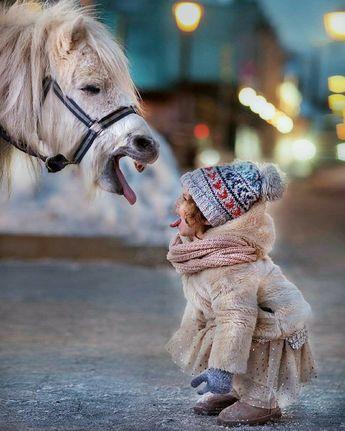 Moğolistan'ın Evcil Ren Geyikleriyle Yaşayan Göçebe Türk Halkı: Dukhalar