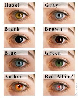 Eye Color Chart: Interesting Facts About the Different Variants