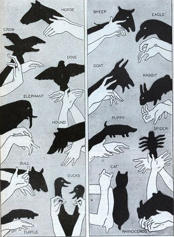 Learn how to make various shadow animals