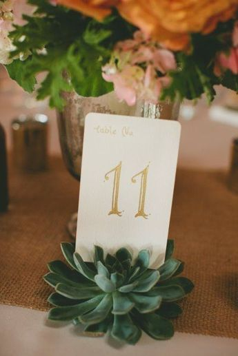 70+ Eye-Popping Succulent Wedding Ideas