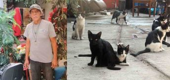 When Homeless Man Passes Away, Neighbors Step Up to Care For His Beloved Cat Colony