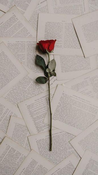 Çok özel bir anıya ithafen… #wallpaper #iphonewallpaper #flowers
