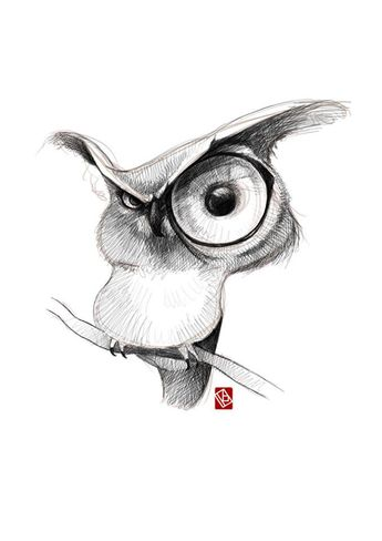 Sketchy animals on Behance