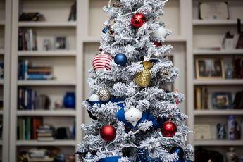 DSC_2915-1 Patriotic Holiday Decor: Reconstruction Era Holiday Theme