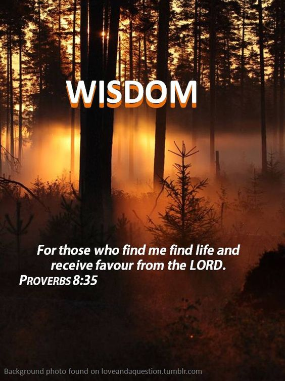 Proverbs 8:35 ``For those who find me find life and receive favour from the LORD``