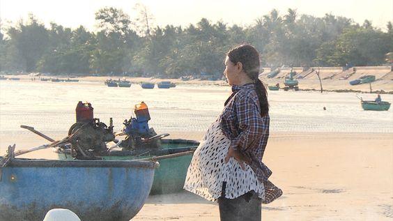 Phim Trà táo đỏ Việt Nam THVl1