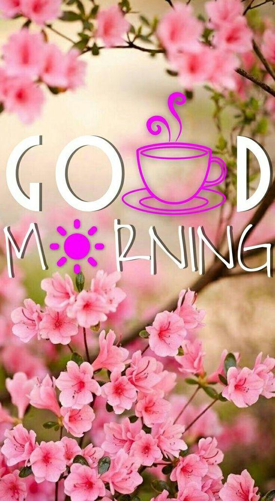 Buenos días!!!!