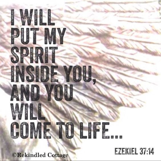 Ezekiel 37:14 And I will put my Spirit within you, and you shall live, and I will place you in your own land. Then you shall know that I am the Lord; I have spoken, and I will do it, declares the Lord.""