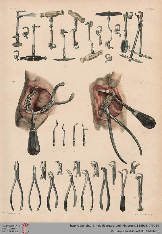 Bourgery, Jean Baptiste Marc; Jacob, Nicolas Henri [Hrsg.]: Traité complet de l'anatomie de l'homme: comprenant la médicine opératoire (Band 6, Atlas) (Paris, 1839)
