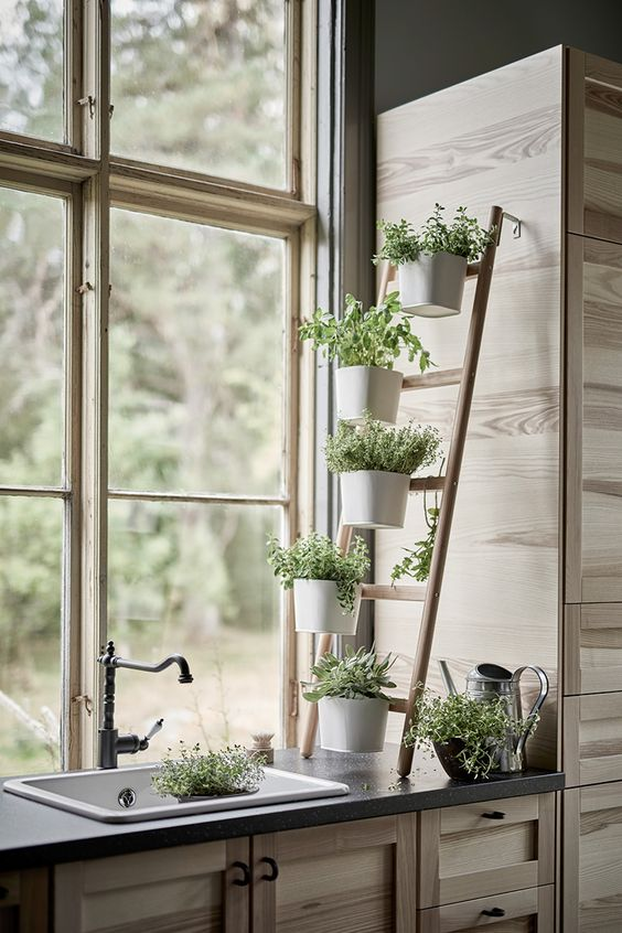 Herbs ladder | IKEA blog