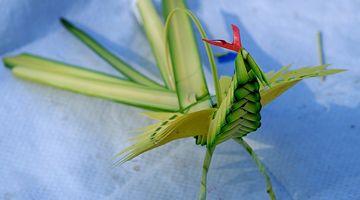 Beija Flor folha coco