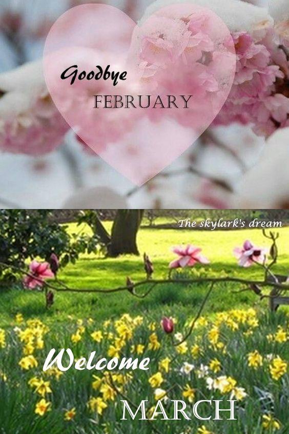 Hello March ... 352facfb6aa1077af30a1712fbc760cc