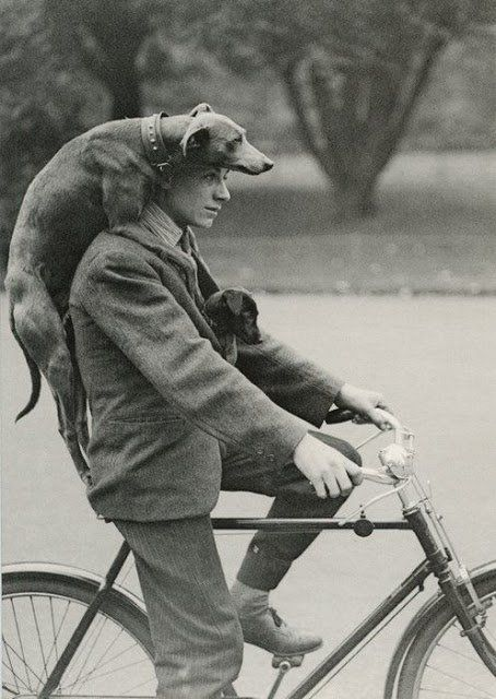 People and Animals – Vintage Photos Capture Lovely Moments of Animals with People ~ vintage everyday
