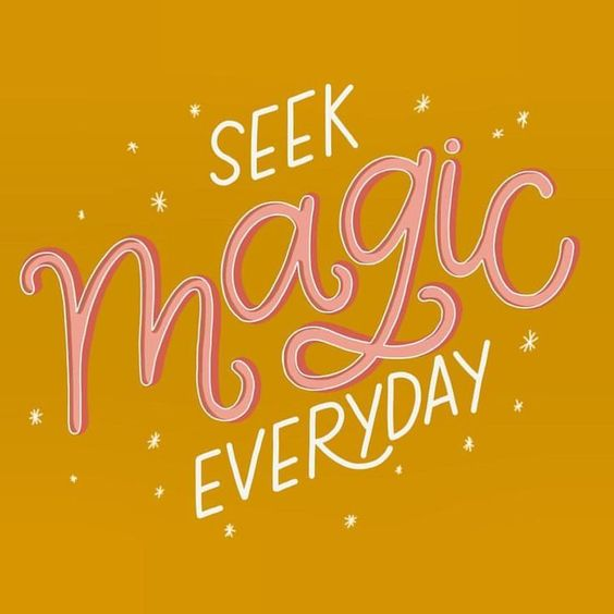 Live more. Worry less. seek magic everyday