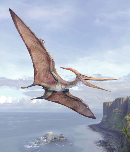 Val Walerczuk - Val_dinosaur_Pteranodon
