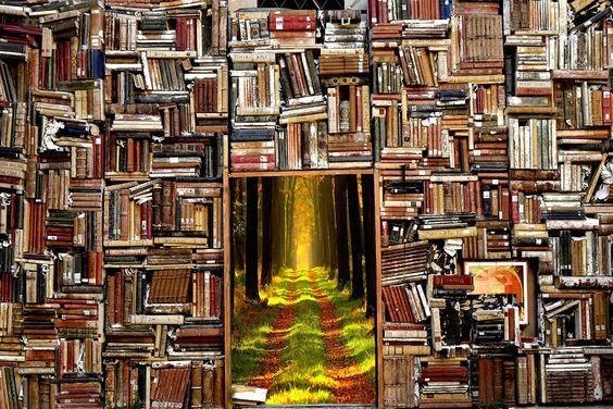 Libri Storia Foresta Il Magico - Foto gratis su Pixabay