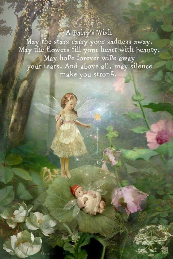 My Fairy's Wish for you🙏🏻💓🧚‍♂️🧚🏻‍♀️🦋 ☆♡ 💫ॐ.....z❤️NSpiceC🌶🦋22Feb2019~*💕 ⭐️☆♡ ~*