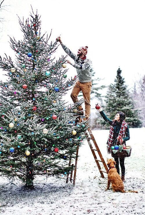 31 Very Merry Christmas Photo Ideas for Couples - TodayWeDate.com  ~~~~~~~~~~~~~~~  christmas photo ideas for couples/christmas photo ideas with dogs/outdoor christmas photo/instagram christmas photo ideas/funny christmas photo ideas/christmas photo with pets/at home christmas photo/christmas pictures/christmas ideas/christmas outfits for couples/christmas tradition/christmas aesthetic/christmas photography