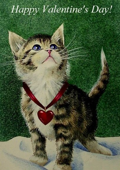 kitten Valentine's Day card