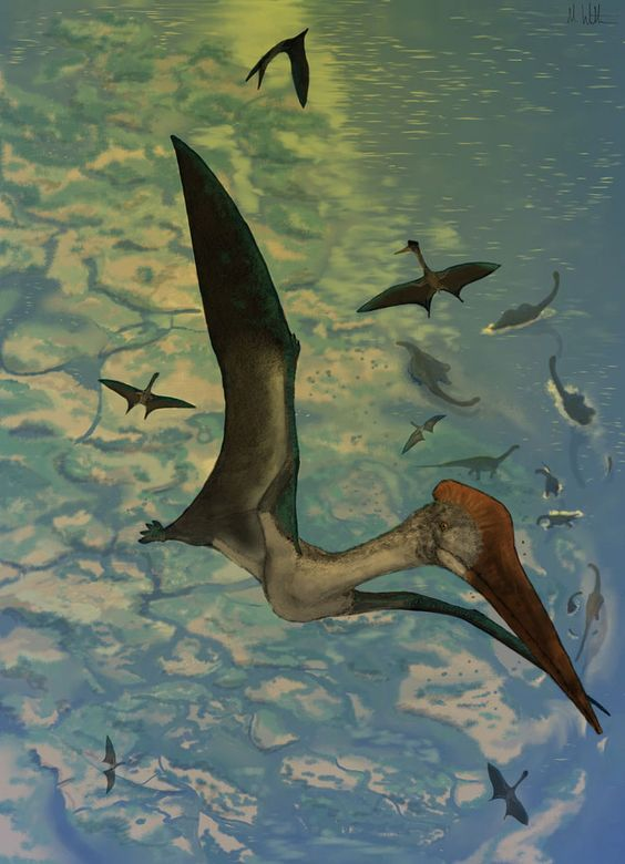 Say hello to one of the largest and most impressive creatures to ever take flight: Quetzalcoatlus northropi of the Cretaceous period, a pterosaur with a wingspan of some 33 feet that stood as tall as a giraffe.