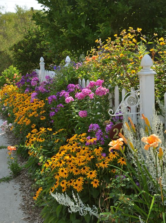 Nice use of the Rudbeckia against a fence.