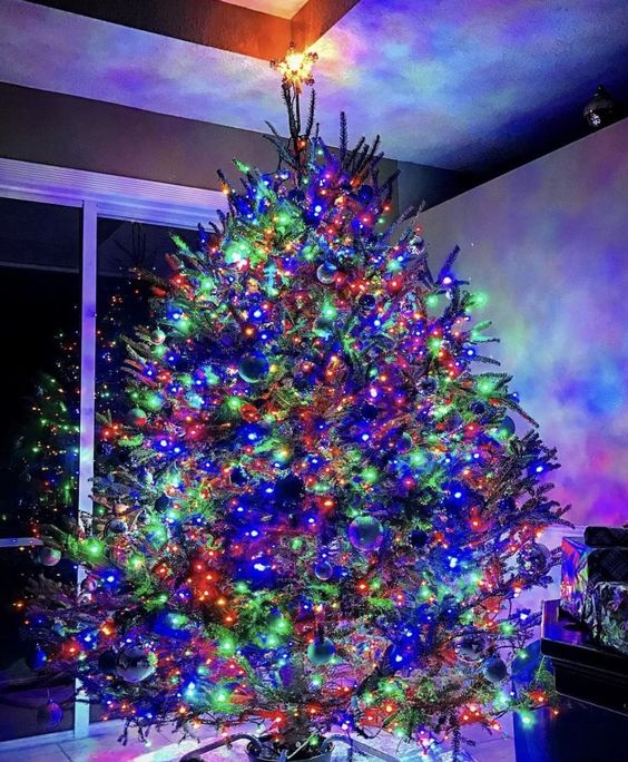 Ultra bright multi-colored LED string lights from Elite Holiday Decor. Perfect for this 9ft, live Christmas tree.