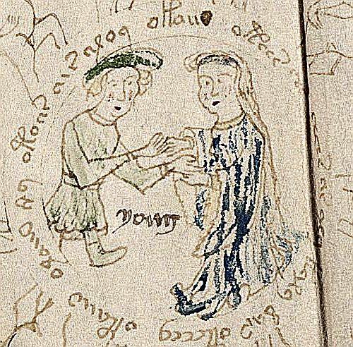 Gemini - Voynich manuscript