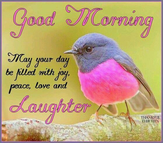 Good Morning, May Your Day Be Filled With Joy, Peace, Love And Laughter