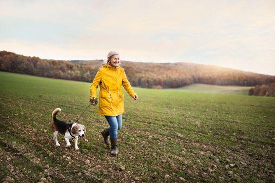 femme plus âgée promener un chien dans un champ