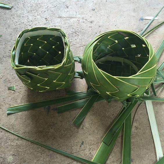 Vaso com folhagem pe de coco