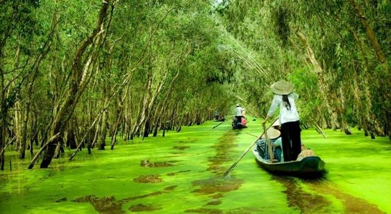 The wonderful beauty of the floating water season through the three famous western destinations of Vietnam #vietnamtours