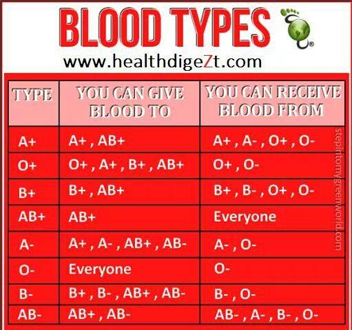 Bloed groepe