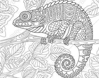 Adultos Para Colorear Gato Montés Doodle De Zentangle Par