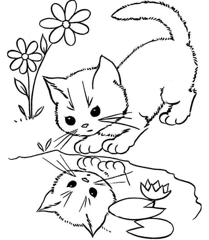 Kedi Boyama Sayfası Cat Coloring Pages Free Printable